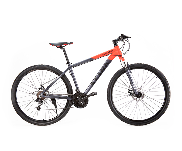 Bicicleta mountain bike Thunder